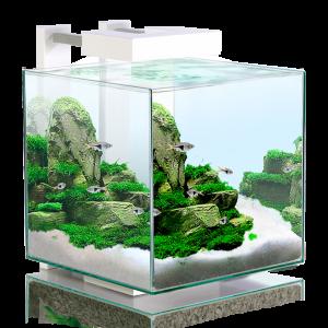 Nexus 15 Nano Cube