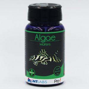 Pro-f Algae Wafers 40g