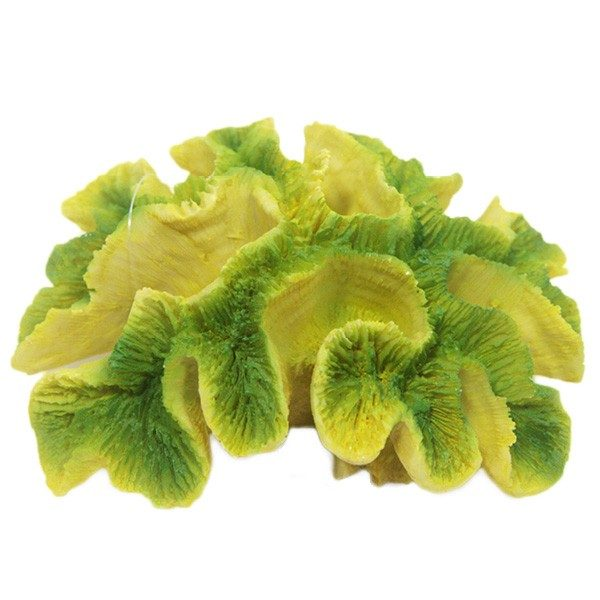 Yellow / Green Ridge Coral